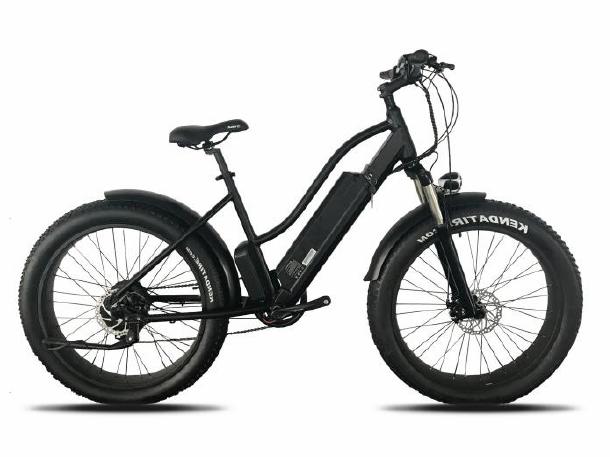 0 El-fatbike TDE12 - Elektrisk sykkel med 250w motor